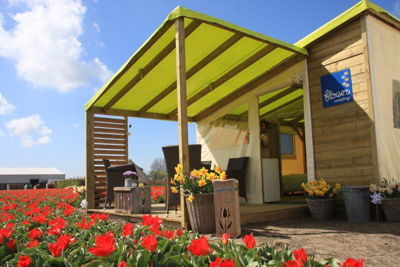 Cabane Fun Flower extérieur