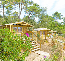 sweetflower, cabane lodge sur pilotis by flower campings