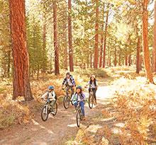 Vacances toussaint balade a vélo en foret