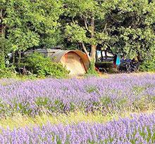 flower camping les truffières à grignan dans la drôme